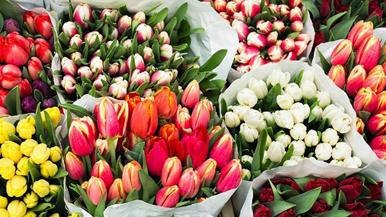 Где купить цветы на 8 марта в москве, для