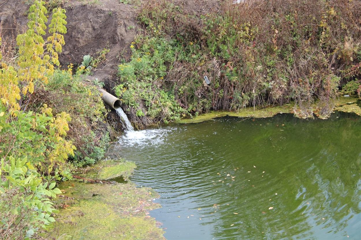 Ручей наполнял искусственный пруд