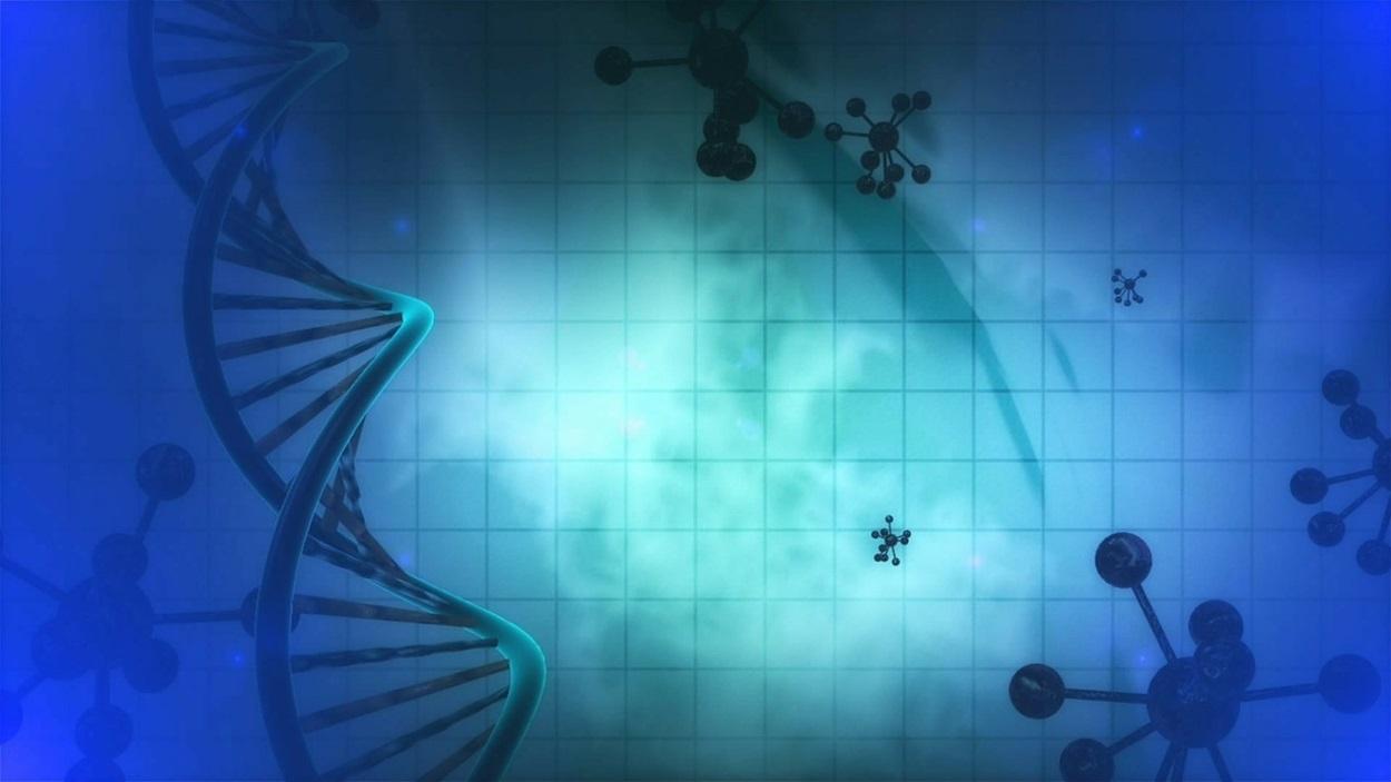 Генетичне ДНК